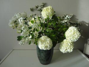 Blanc de printemps