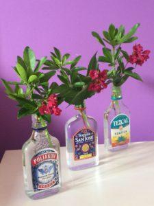 Flasques, canettes et compagnie