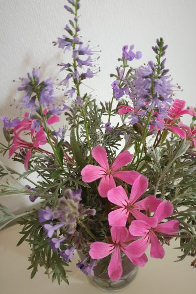 bouquet armois, nepetas, veroniques, geranium lierre