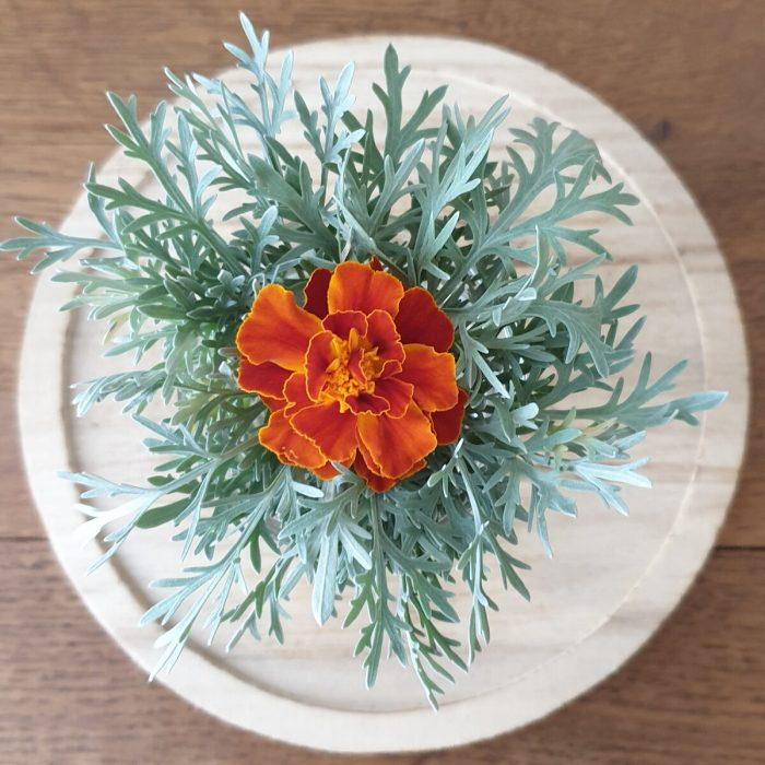 bouquet armoise oeillet d'Inde