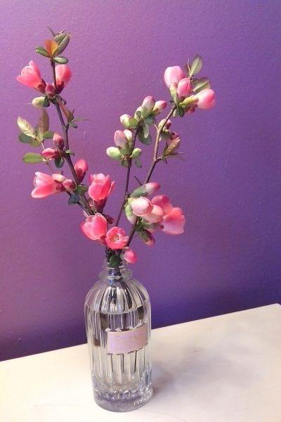 bouquet pommier du Japon