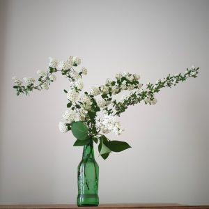 Bouquets tirés de la haie