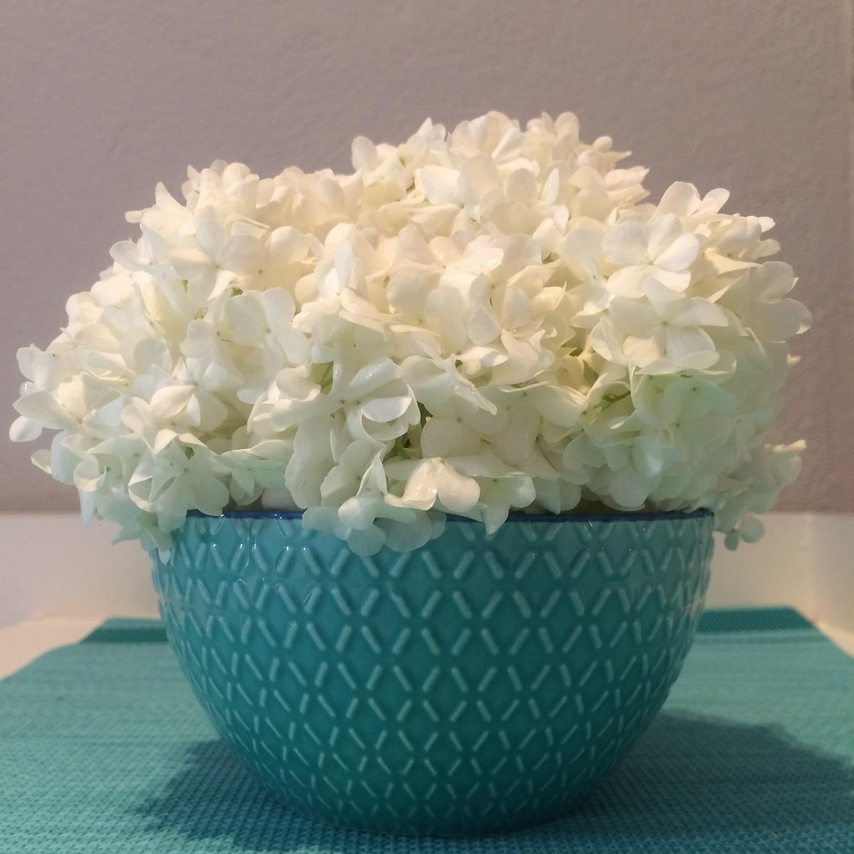 coupe fleurs de boules de neige