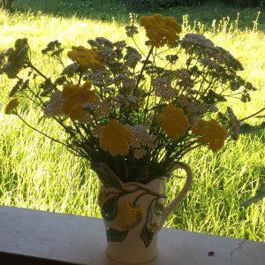 Trois bouquets sous le soleil de juillet