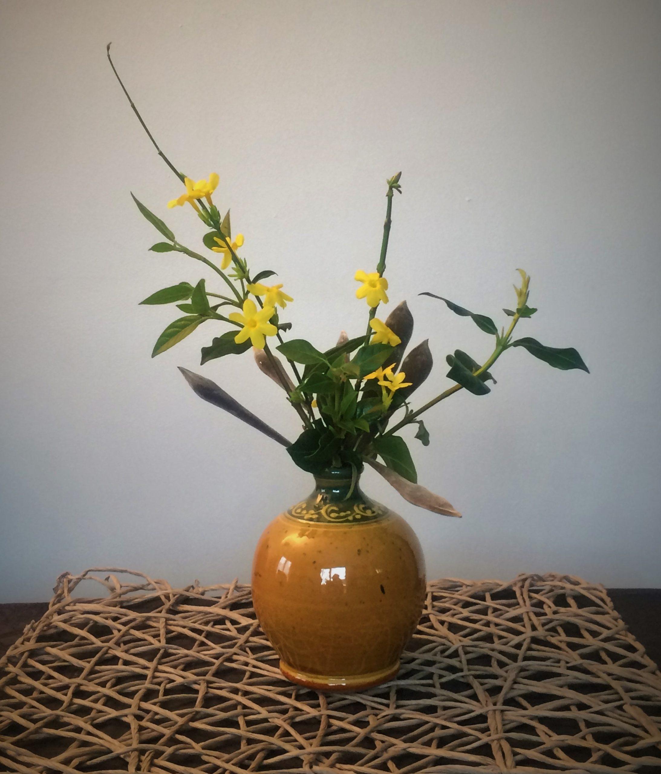 Bouquet jasmin d'hiver/ chèvrefeuille/ gousses de glycine